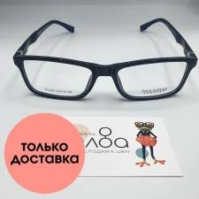 Мужские очки Paradise CN824